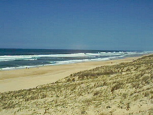 the beaches in the Landes