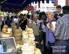 Photo brebis cheese