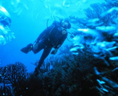 scuba diving in Biarritz