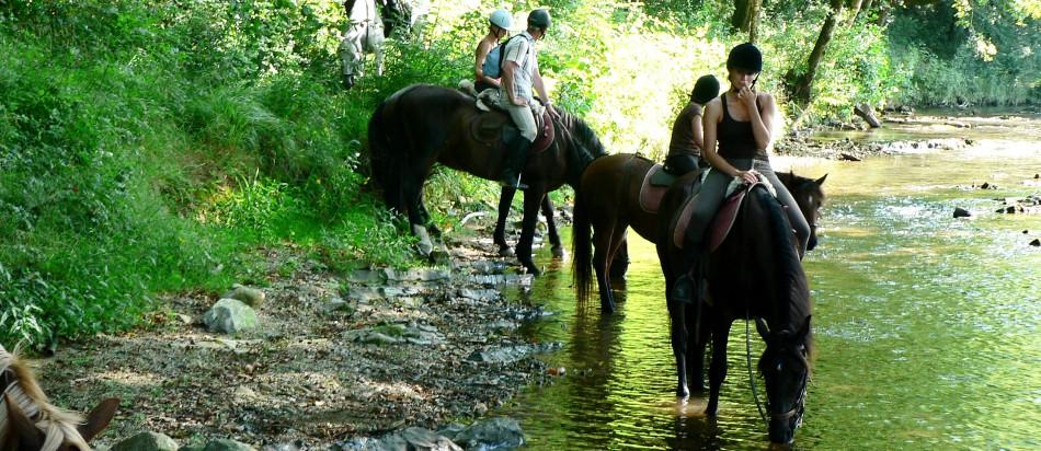promenade cheval urrugne